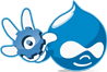 Custom Drupal