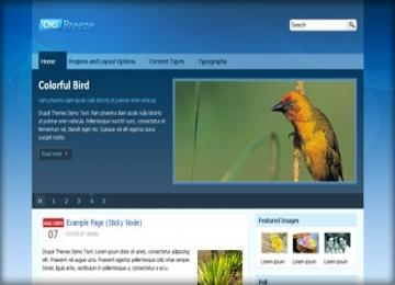 CMS Breeze drupal 7 free theme